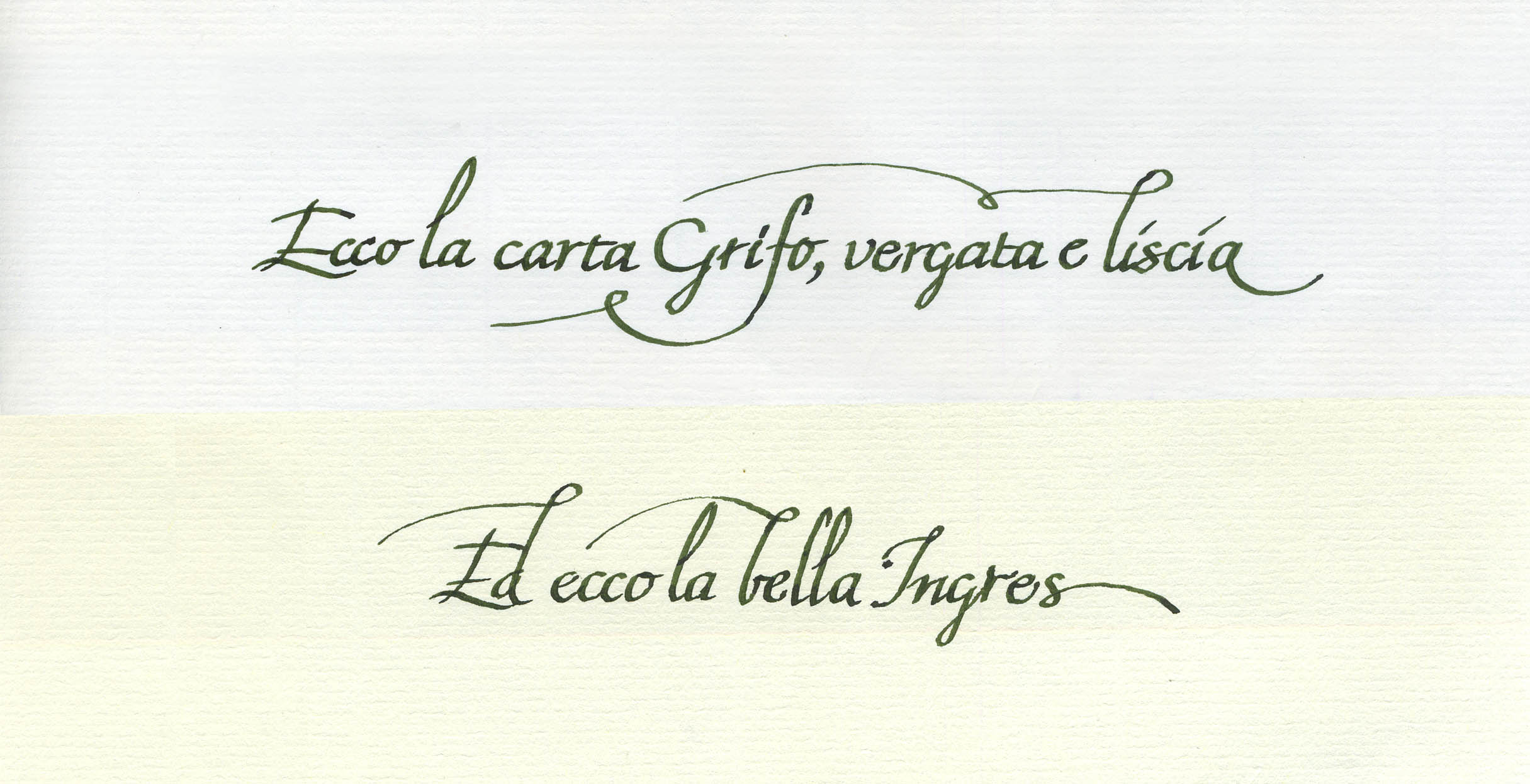 Grifo vs Ingres 1.jpg
