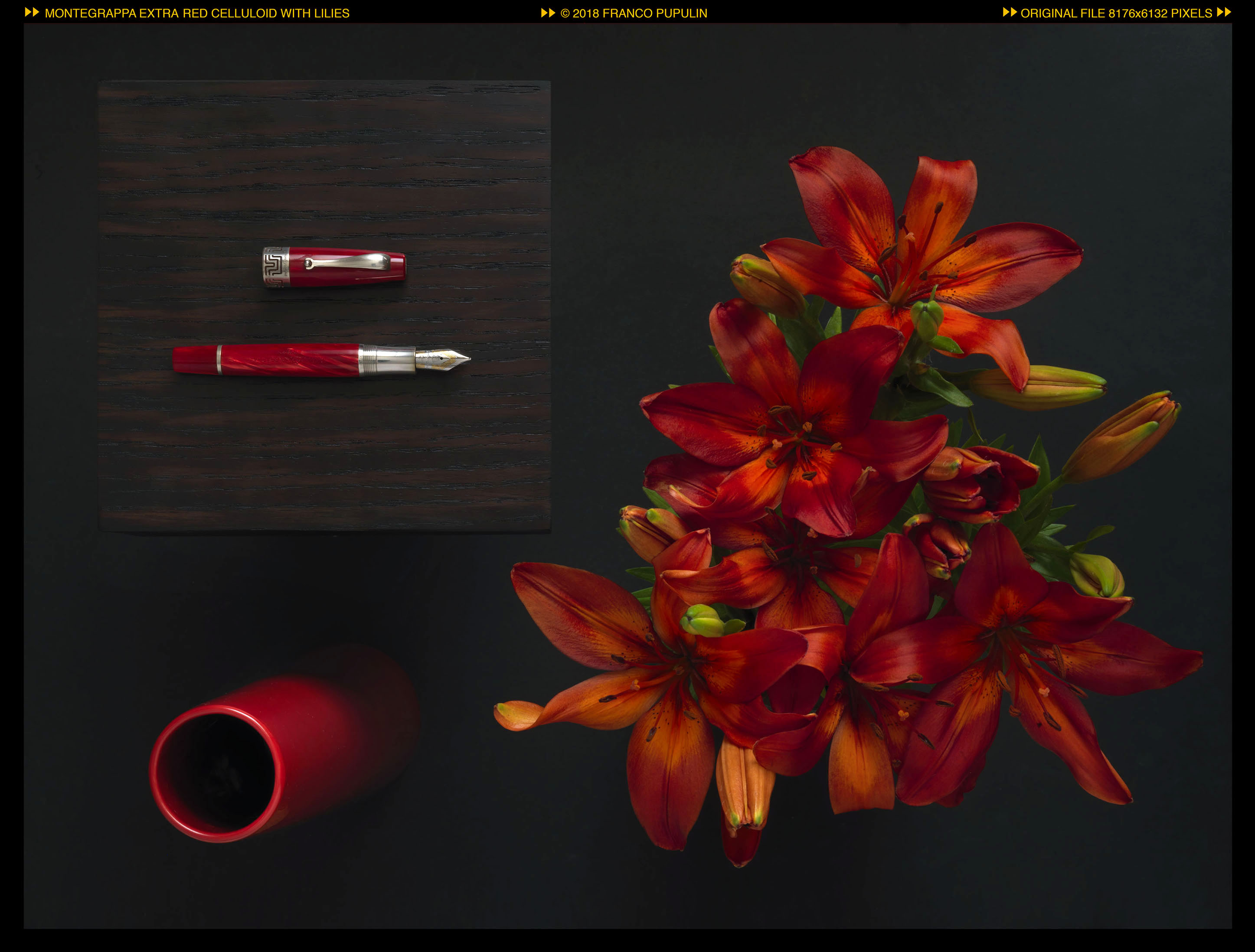 Montegrappa Extra red celluloid with lilies (1).jpg
