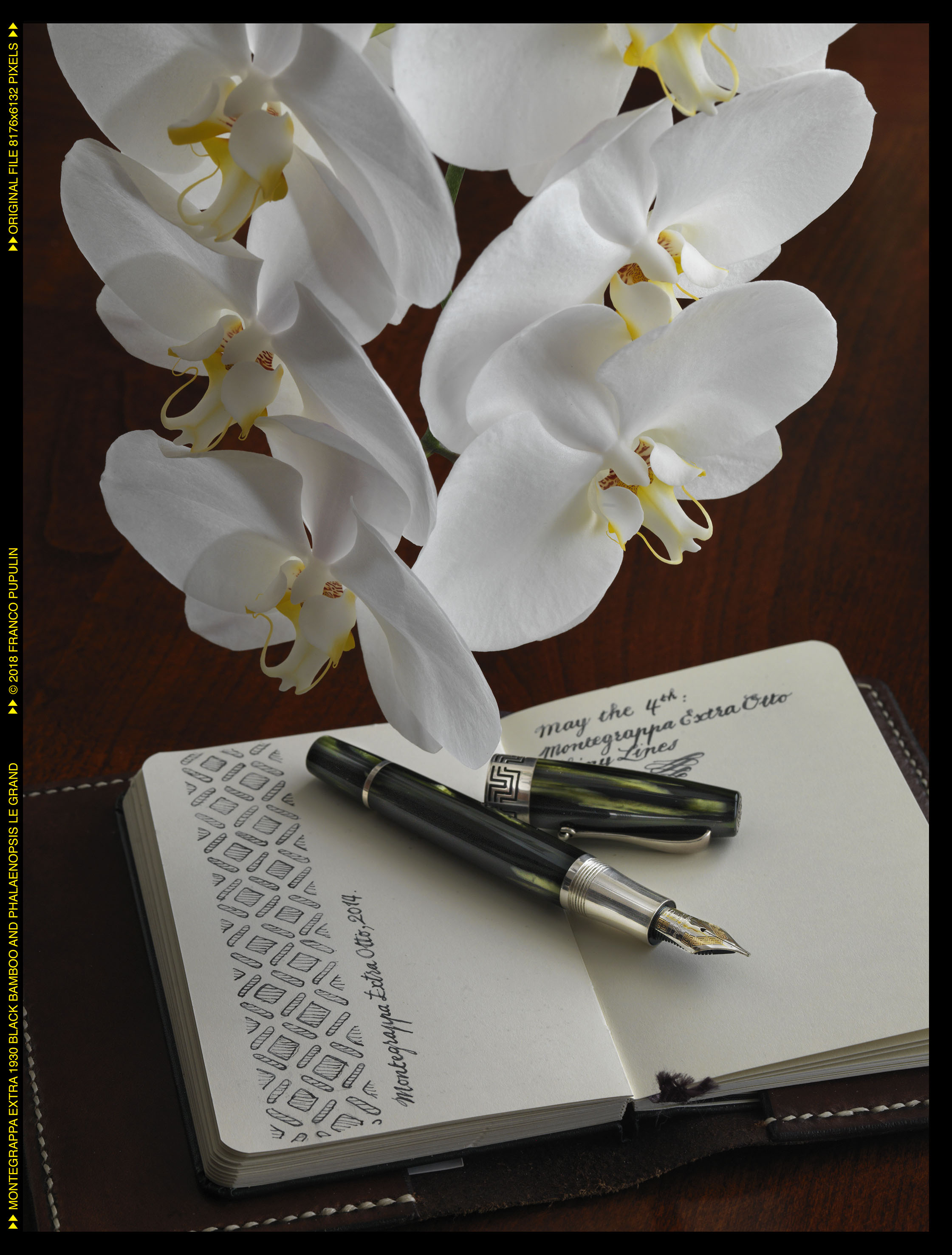 Montegrappa Extra 1930 Black Bamboo and Phalaenopsis Le Grand ©FP.jpg